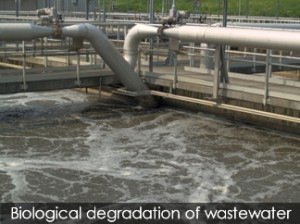 sewage plant 1